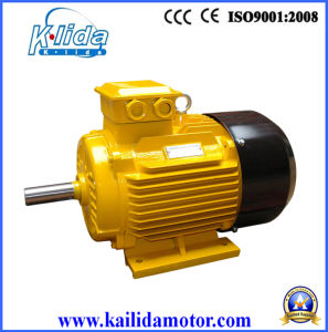 Three Phase Electric Motor with Ce 18.5kw High Quality Approved Factory Price pictures & photos