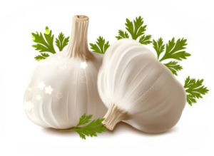 Chinese Fresh New White Garlic with High Quality pictures & photos