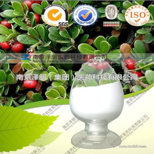 Factory Direct Supply Natural Bearberry Extract Deoxyarbutin pictures & photos