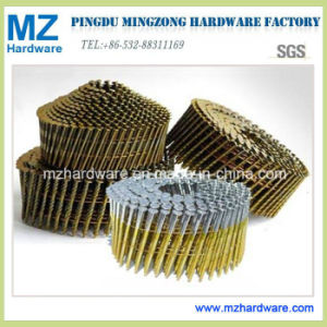 Collated Coil Roofing Nails for North America Market in High Quality and Competitive Price pictures & photos