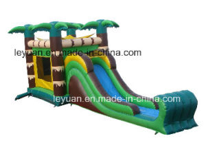 Cheap Inflatable Castle Combo with Slide En14960
