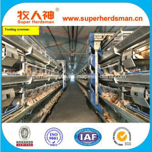 Low Cost High Quality Battery Layer Chicken Cage pictures & photos