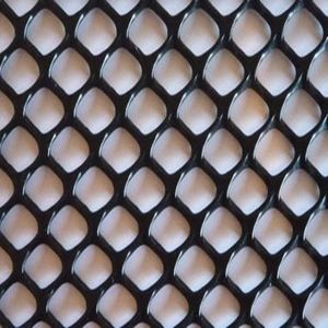 100% Virgin Protective Plastic Netting/Plastic Net pictures & photos