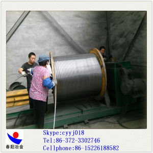 Chinese Professional Manufacture of Cafe Cored Wire pictures & photos