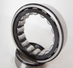 SL Nncl Full Complement Cylindrical Roller Bearing SL014920 NSK Japan pictures & photos