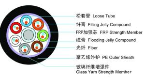 GYFTY 8 Core 3000n Optical Fiber Cable with High Quality pictures & photos