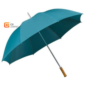 30 Inch, Straight Auto Open Golf Umbrella (YSG0005)