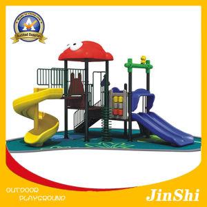 Animal World Series Children Outdoor Playground, Plastic Slide, Amusement Park GS TUV (DW-009) pictures & photos
