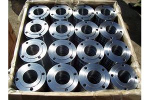ASTM A182 Forging Dn500 Pn10 Steel Flanges pictures & photos
