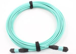 Mass Production Price for Data Center′s Fiber Optic MTP/MPO Patch Cord pictures & photos