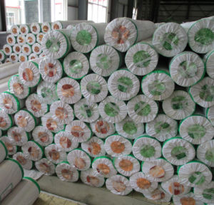 0.35mm 0.4mm 0.45mm 0.5mm 0.55mm 0.6mm PVC Roll Flooring pictures & photos