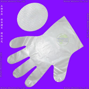 Disposable Food Industry PE Gloves pictures & photos