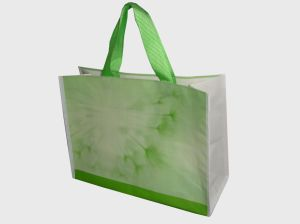 Promotional Cheapest New Materal PP Woven Bag for Shopping