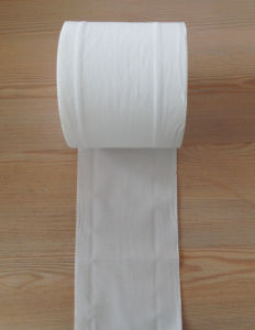 Premium Toilet Tissue, Toilet Paper, Bathroom Tissue pictures & photos