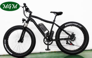 Fat Tire Snow Bike Big Power Electric Bicycle pictures & photos