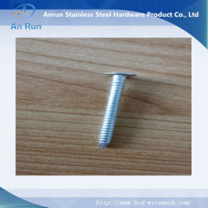 Wholesale High Quality Durable Galvanized Ring Shank Nail pictures & photos