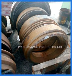 High Quality Hot Sale Pellet Machine Accessories Forging Parts pictures & photos