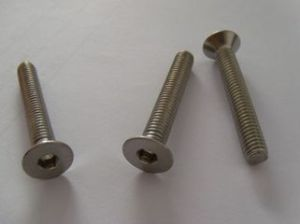 Machine Screw with Triangle Type High Quality, New 2016 pictures & photos