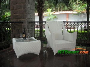 Wicker Leisure Chair (H023) pictures & photos