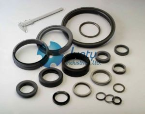 Reaction Bonded Silicon Carbide Seal Face of Mechanical Seal pictures & photos