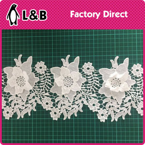3D White Embroidery Lace pictures & photos