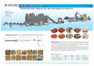 200-300kg/H High Speed Extruded Textured Soya Nugget Processing Line pictures & photos