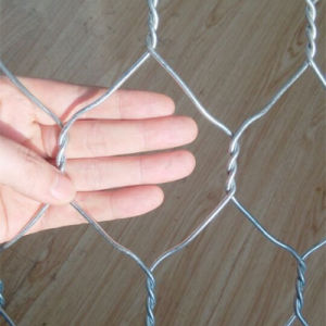 China Wholesale Price Mesh 80X100mm Gabion Prices pictures & photos