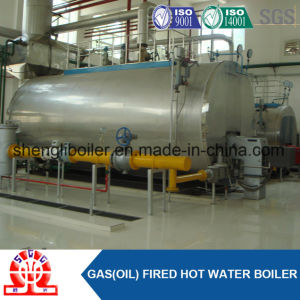 Class a Manucturer Combi Gas Fired Boiler with Steam Header pictures & photos