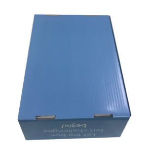 off-Set Printing Carton Box for Shipping pictures & photos