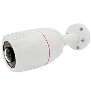 Fish-Eye 130degree 960p IR Waterproof Web IP Camera pictures & photos