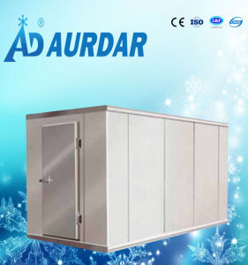 Container Cold Room for Sale pictures & photos