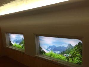 Sheet Moulding Compound SMC for Rail Transport pictures & photos