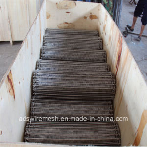 Stainless Steel Conveyor Belt for Various Industries pictures & photos