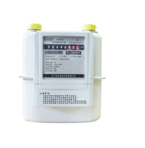 GS 1.6/2.5/4 Wireless Gas Meter, AMR, GPRS, Lora Tech6 pictures & photos