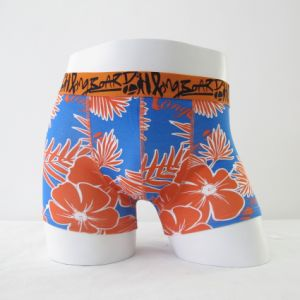 Summer Men′s Boxer Shorts (JL-072BX)
