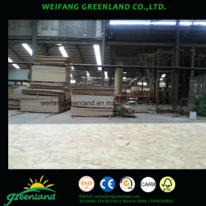 9mm-22mm Environmetal Quality OSB Board pictures & photos