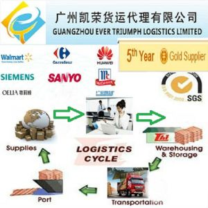 China Shipping Agent Freight Forwarder to USA