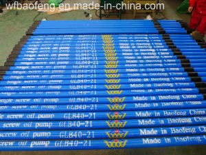 Coalbed Methane (CBM) Specialized Downhole Screw Pump Well Pump pictures & photos