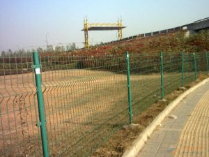 Anping Double Side Fence pictures & photos