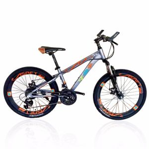"2016 Hot Sale Mountain Bike, 26"" 21/24sp (MTB-027) pictures & photos"