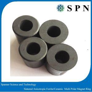 Ferrite Permanent Magnet Multipolar Rings pictures & photos