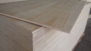 Triplay Pine Plywood/4.5mm/18mm Plywood pictures & photos