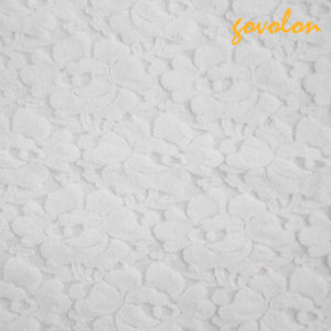 Hot Sale Embroidey Nylon Lace Fabric pictures & photos