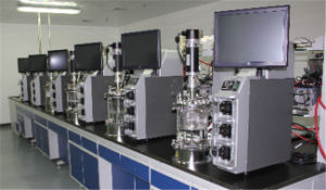 Stainless Steel Automatic Laboratorial Ferment System pictures & photos