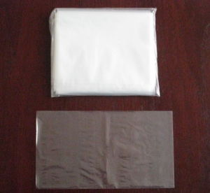 LDPE Transparent Plastic Flat Bag pictures & photos