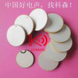Beauty Chip Ultrasonic 15mm Dual Electrode Piezoelectric Ceramic Buzzer pictures & photos