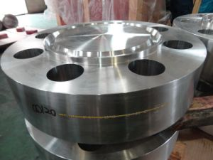 F904L Flange, Forging pictures & photos