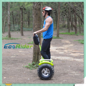 China Balance 2 Wheel Electric Skateboard Scooter with Ce Certificate pictures & photos