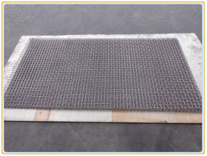 ISO9001 Certification Crimped Wire Mesh Panels pictures & photos