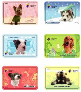 Printed PVC Smart Card pictures & photos